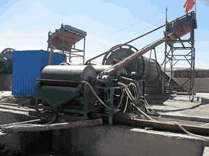 High Quality New Pyrrhotite Sawdust Dryer For Sale In Surabaya